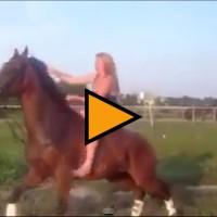 L'Ice Bucket Challenge in groppa a un cavallo non è una buona idea - VIDEO